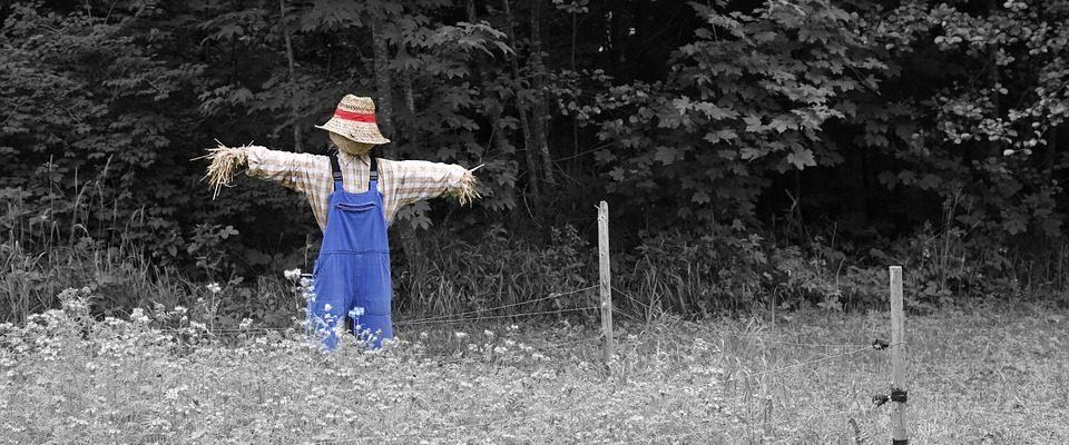 scarecrow-960x400.jpg