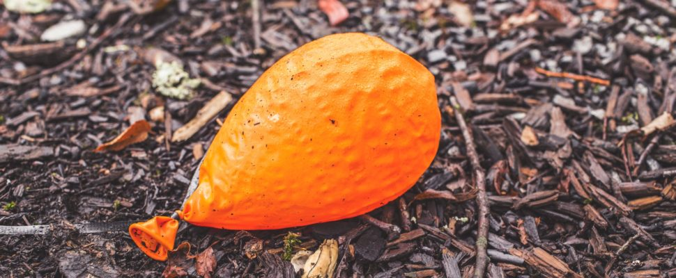 ground-orange-balloon-deflated-4631-970x400.jpg